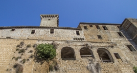 Castle of the Anguillara family